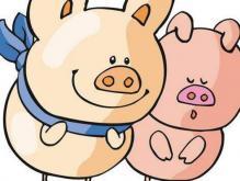 属猪的带什么旺财